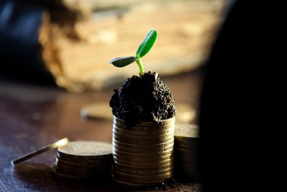 laporan-keuangan-lembaga-zakat