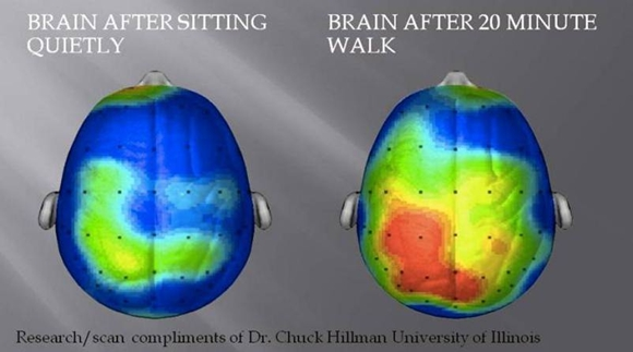 orang yang rajin olahraga sel otaknya akan lebih cerah