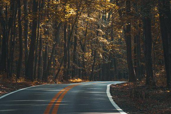 pajak-infrastruktur-jalan-raya