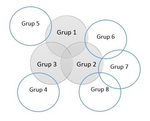 tujuan kelompok dominan Laporan Keuangan
