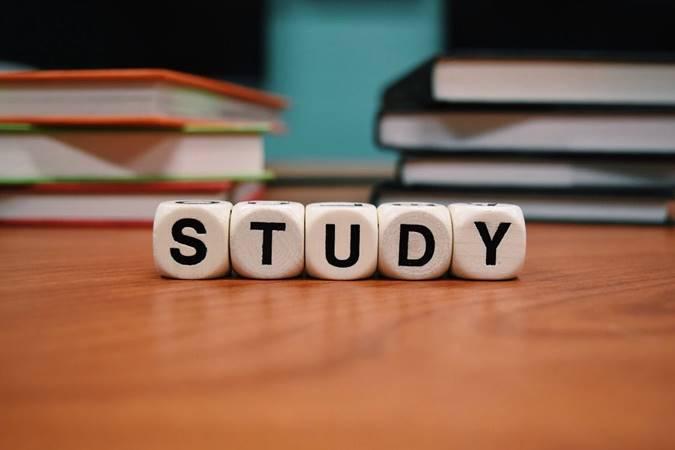 Studi Struktur SOP